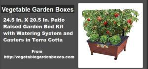 ad-vegetablegardenboxes